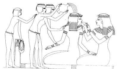 moringa-egypt-img